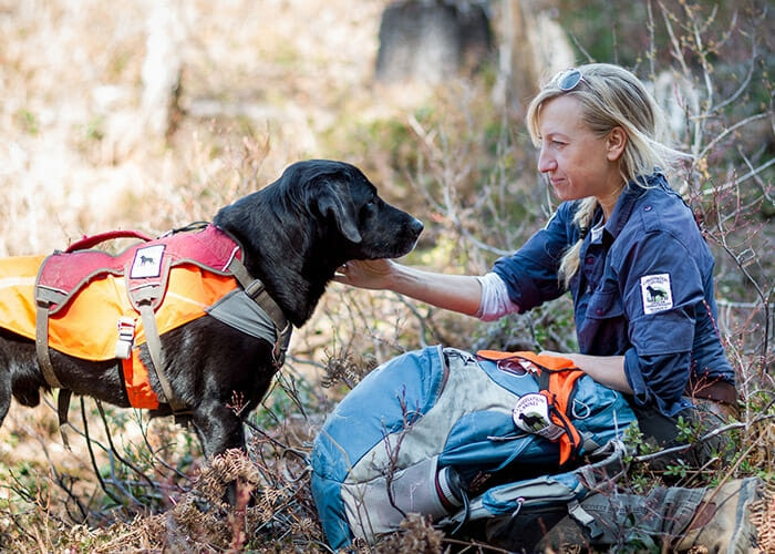 Rescued Dogs Help Protect Endangered Species as Conservation Canines