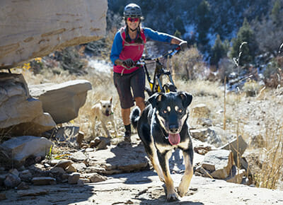Summer Fun Safety Guide: Staying Safe on the Trails
