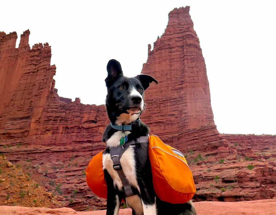 Fisher Towers and Zia, Utah; photo by Jeff Golden