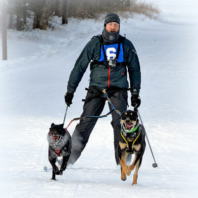 Skijoring with dogs; photo courtesy of Kevin Roberts