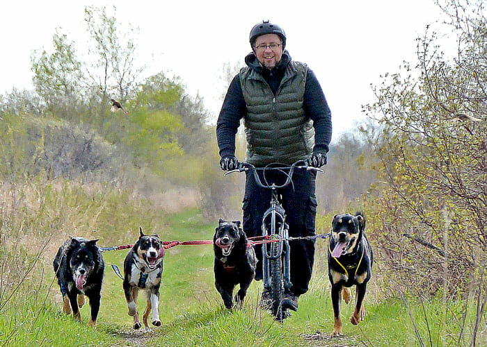 How to Start Skijoring and Bikejoring With Your Dog