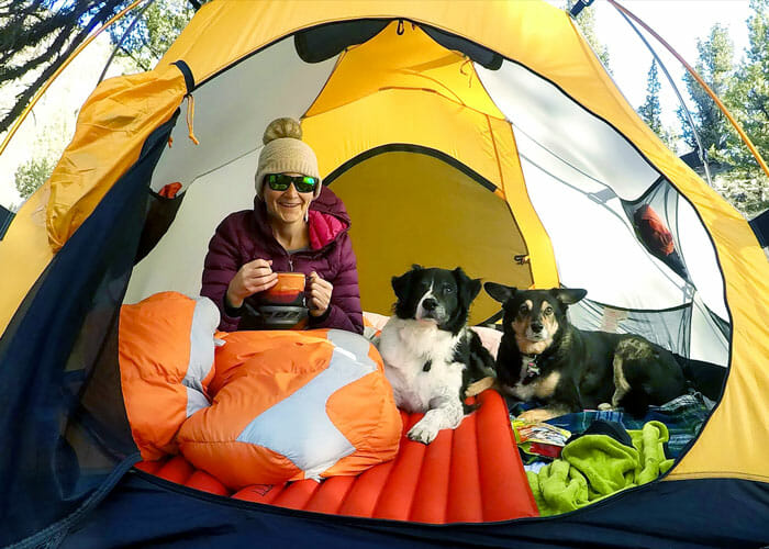 """Which Camping is Best for Your Dog: Backcountry Camping, Car Camping or """"Glamping""""?"""