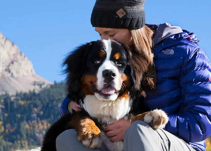 30 Reasons Why Your Dog is Better Than Your Ex