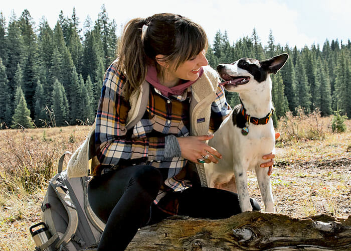 5 Facts and Fixes for Doggy Breath