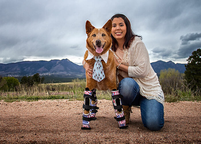 Meet Two Incredible Dogs: Naki'o The Bionic Dog and Surf Dog Ricochet