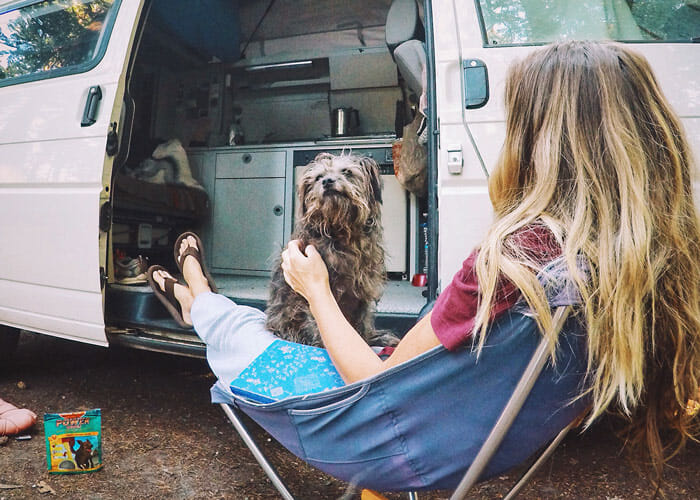 6 Tips for Road Tripping With Your Dog