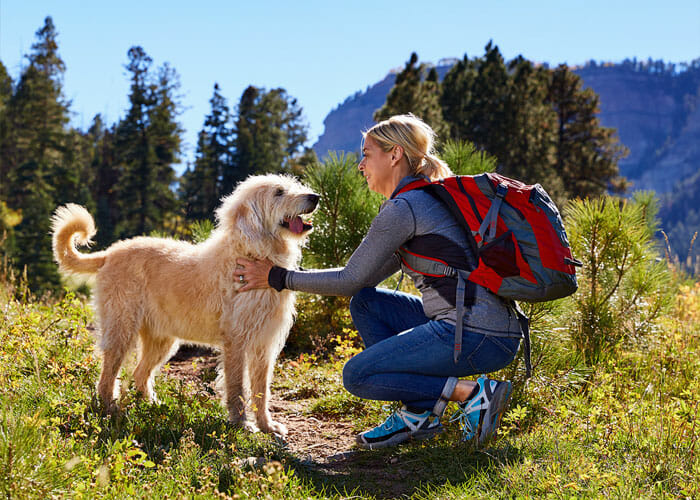 Trail Etiquette 101: 4 Tips for Safe Encounters With Off-Leash Dogs on the Trail