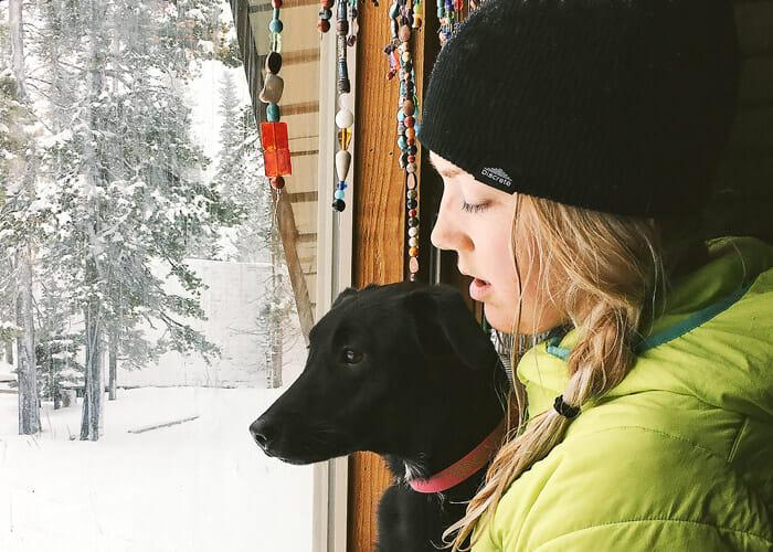 Overcoming Canine Cabin Fever