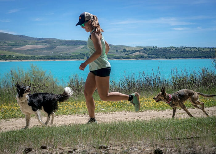 6 Reasons to Trail Run with Your Dog